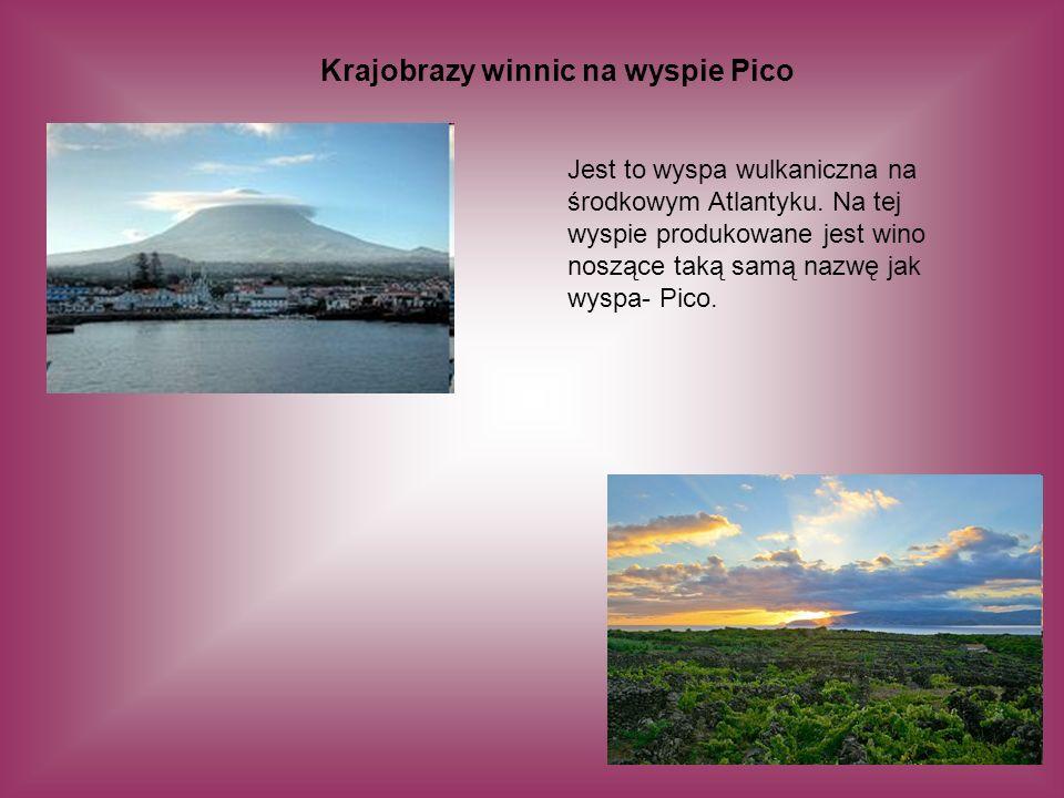 Krajobrazy winnic na wyspie Pico Jest to wyspa wulkaniczna na środkowym Atlantyku. Na tej wyspie produkowane jest wino noszące taką samą nazwę jak wys