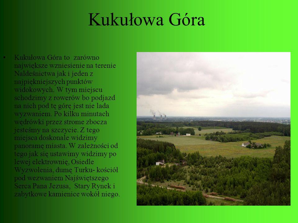 Kukułowa Góra Kukułowa Góra to zarówno największe wzniesienie na terenie Naldeśnictwa jak i jeden z najpiękniejszych punktów widokowych. W tym miejscu
