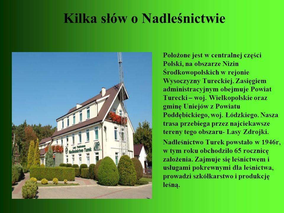 Kilka słów o Nadleśnictwie Położone jest w centralnej części Polski, na obszarze Nizin Środkowopolskich w rejonie Wysoczyzny Tureckiej. Zasięgiem admi