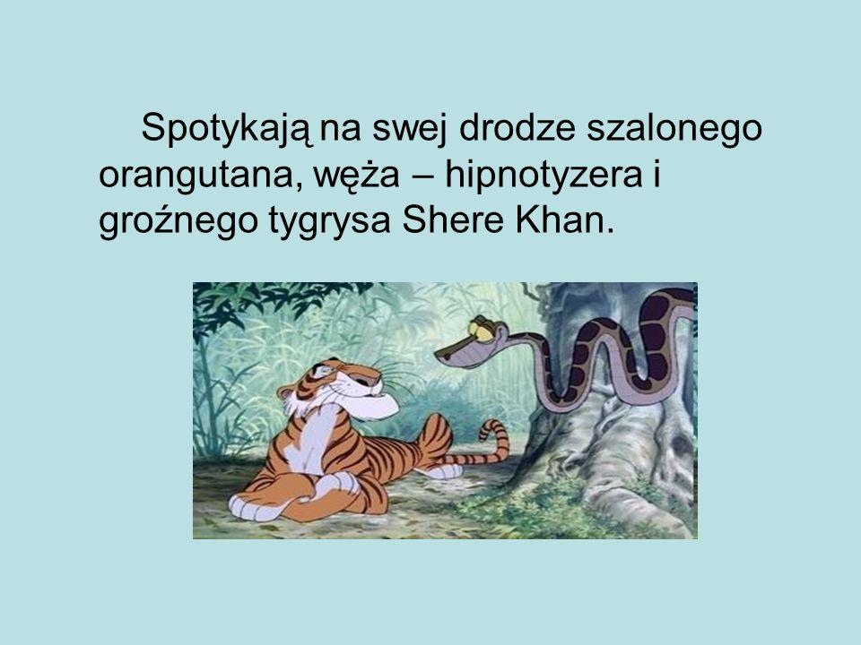 Spotykają na swej drodze szalonego orangutana, węża – hipnotyzera i groźnego tygrysa Shere Khan.
