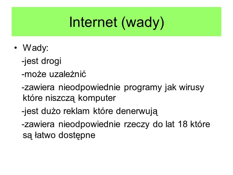 Internet (wady) Wady: -jest drogi -może uzależnić -zawiera nieodpowiednie programy jak wirusy które niszczą komputer -jest dużo reklam które denerwują