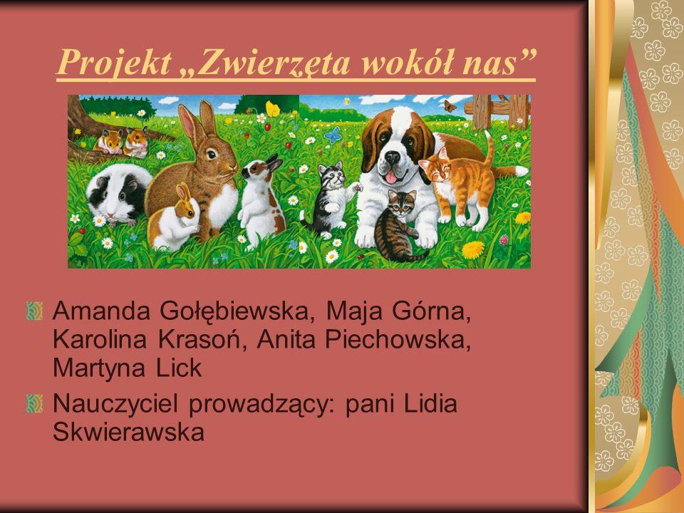 Ankieta w naszej szkole 4 kwietnia przeprowadziłyśmy ankietę wśród wybranych klas dotyczącą hodowli zwierząt domowych.