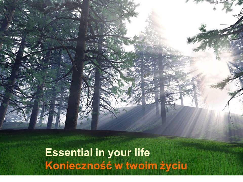 Essential in your life Konieczność w twoim życiu