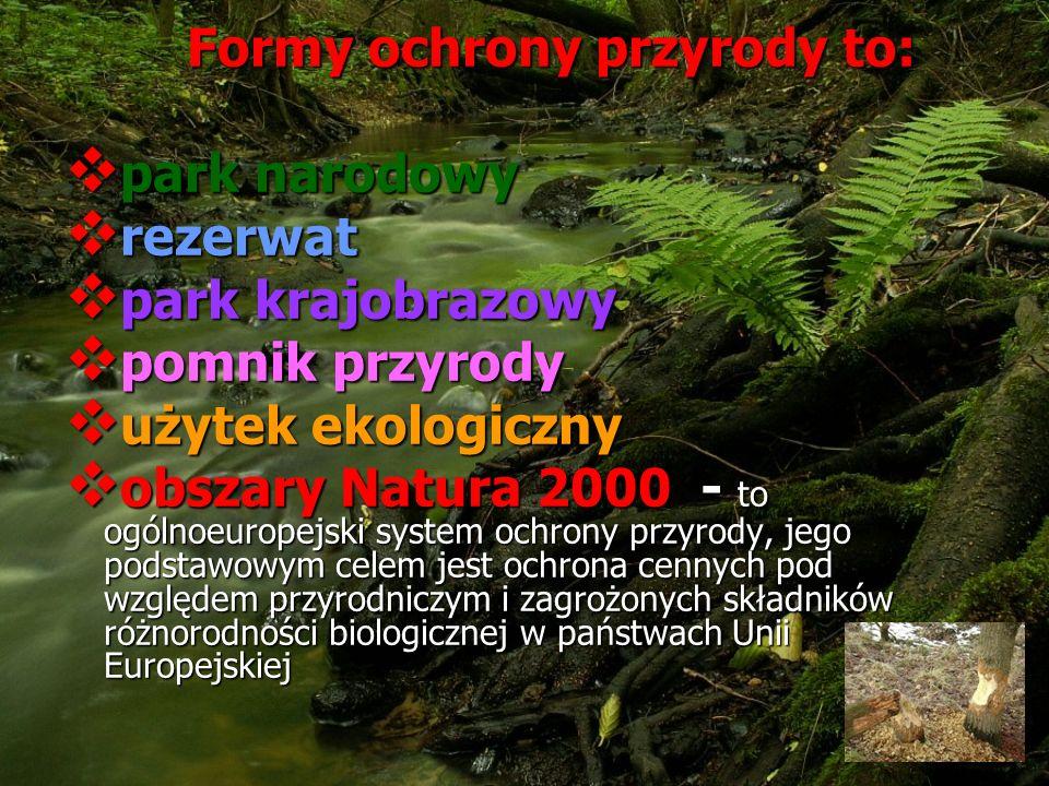 Formy ochrony przyrody to: Formy ochrony przyrody to: park narodowy park narodowy rezerwat rezerwat park krajobrazowy park krajobrazowy pomnik przyrody pomnik przyrody użytek ekologiczny użytek ekologiczny obszary Natura 2000 - to ogólnoeuropejski system ochrony przyrody, jego podstawowym celem jest ochrona cennych pod względem przyrodniczym i zagrożonych składników różnorodności biologicznej w państwach Unii Europejskiej obszary Natura 2000 - to ogólnoeuropejski system ochrony przyrody, jego podstawowym celem jest ochrona cennych pod względem przyrodniczym i zagrożonych składników różnorodności biologicznej w państwach Unii Europejskiej