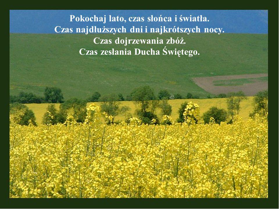 Pokochaj lato, czas słońca i światła. Czas najdłuższych dni i najkrótszych nocy. Czas dojrzewania zbóż. Czas zesłania Ducha Świętego.