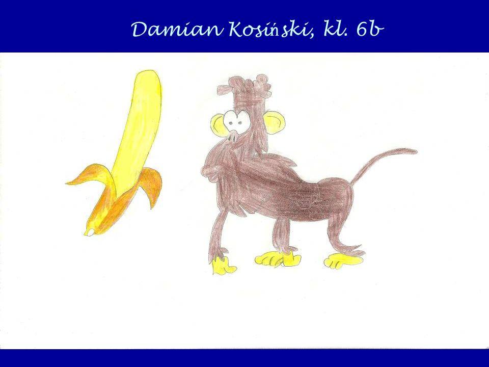 Damian Kosi ń ski, kl. 6b