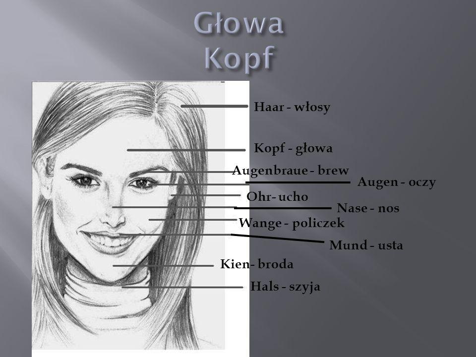 Haar - włosy Kopf - głowa Augenbraue - brew Augen - oczy Ohr- ucho Nase - nos Wange - policzek Kien- broda Hals - szyja Mund - usta