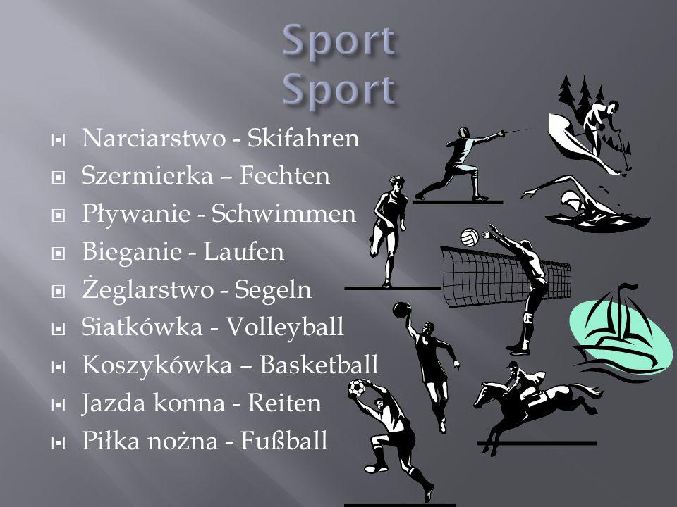Narciarstwo - Skifahren Szermierka – Fechten Pływanie - Schwimmen Bieganie - Laufen Żeglarstwo - Segeln Siatkówka - Volleyball Koszykówka – Basketball