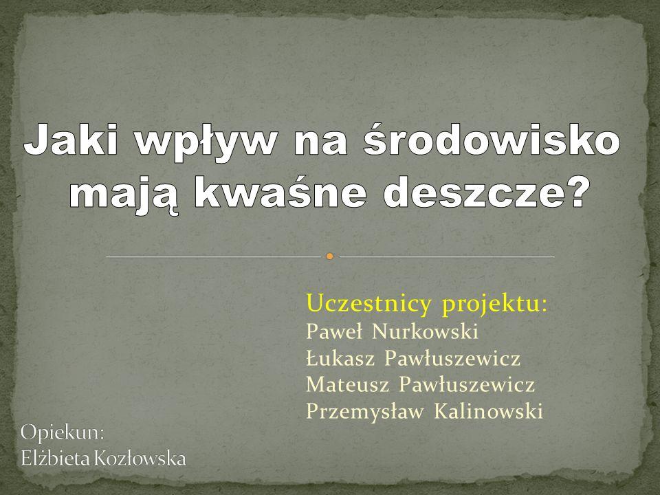Uczestnicy projektu: Paweł Nurkowski Łukasz Pawłuszewicz Mateusz Pawłuszewicz Przemysław Kalinowski