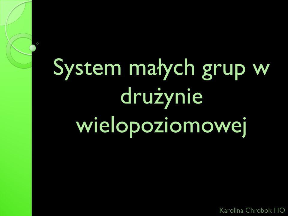 System małych grup w drużynie wielopoziomowej Karolina Chrobok HO