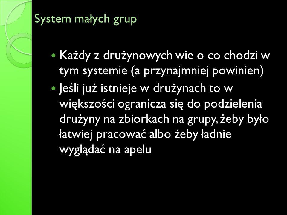 System małych grup Każdy z drużynowych wie o co chodzi w tym systemie (a przynajmniej powinien) Jeśli już istnieje w drużynach to w większości ogranic