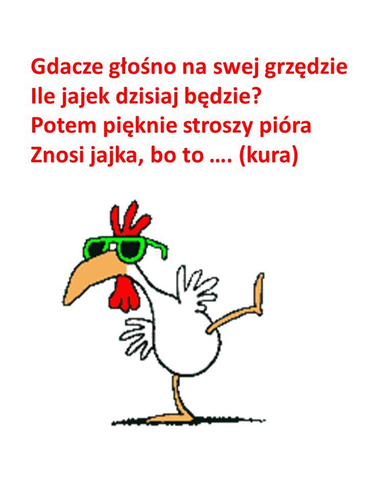 Gdacze głośno na swej grzędzie Ile jajek dzisiaj będzie? Potem pięknie stroszy pióra Znosi jajka, bo to …. (kura)