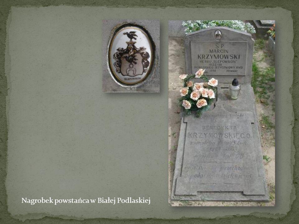 Grób powstańca na cmentarzu Łyczakowskim we Lwowie. Groby powstańców znajdują się nie tylko w kwaterze powstańczej.