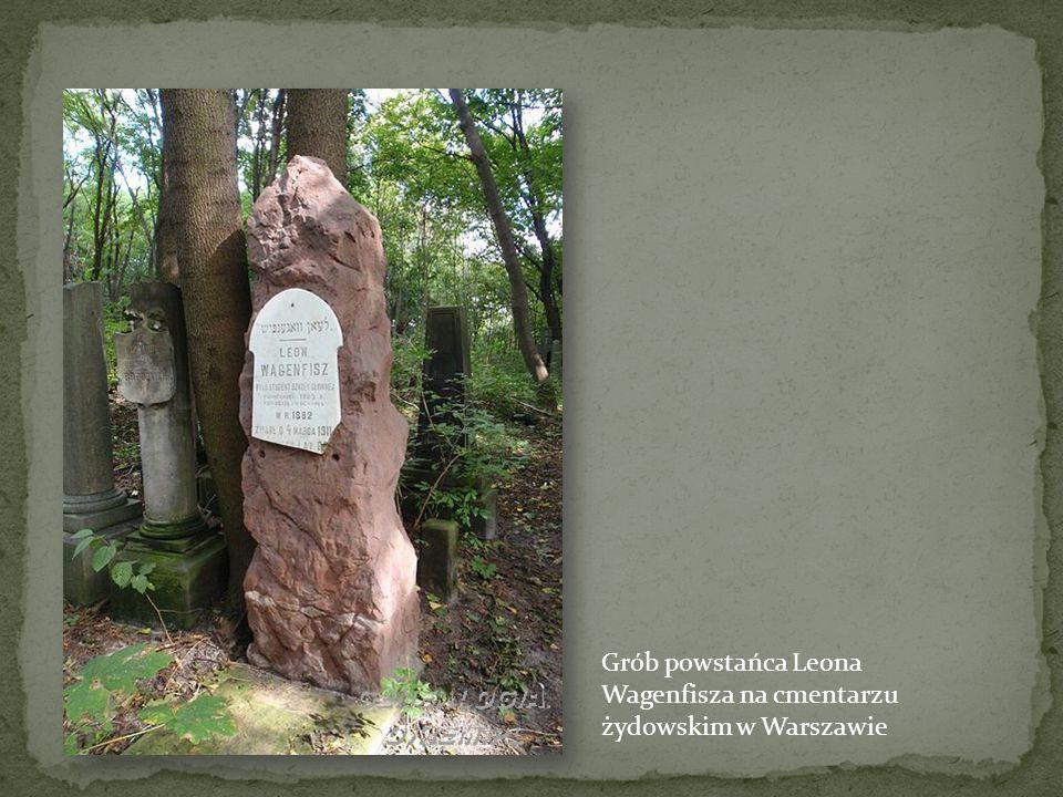 Inny nagrobek powstańca w Kołomyi: Saturnin Andrzej Zaremba Cmentarz w Kołomyi, to opuszczony, zaniedbany park. Nagrobki osłaniają pijących wino i bio