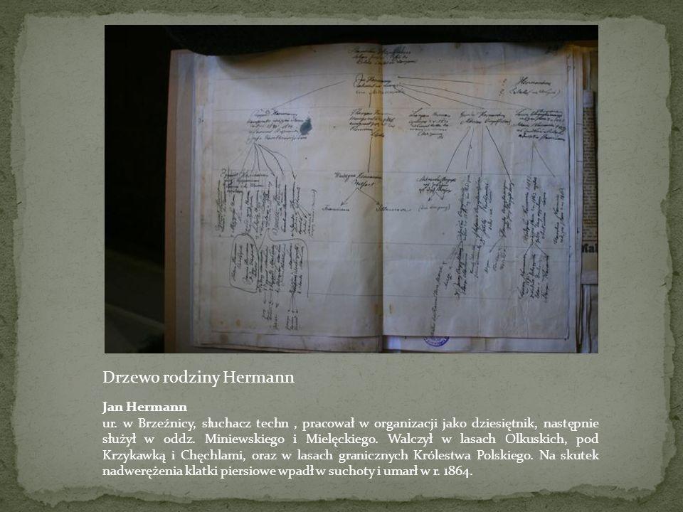 Genealogia rodziny powstańczej Archiwum lwowskie