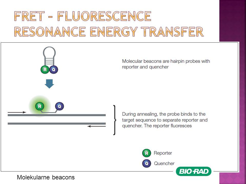 Molekularne beacons