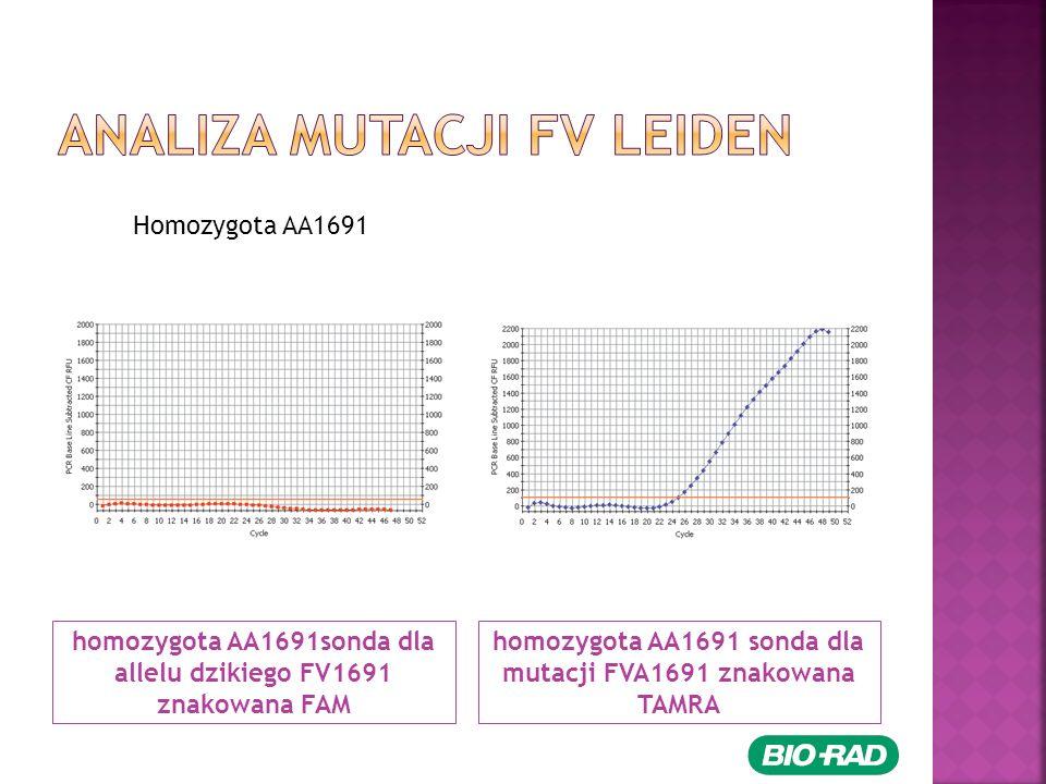 homozygota AA1691sonda dla allelu dzikiego FV1691 znakowana FAM homozygota AA1691 sonda dla mutacji FVA1691 znakowana TAMRA Homozygota AA1691