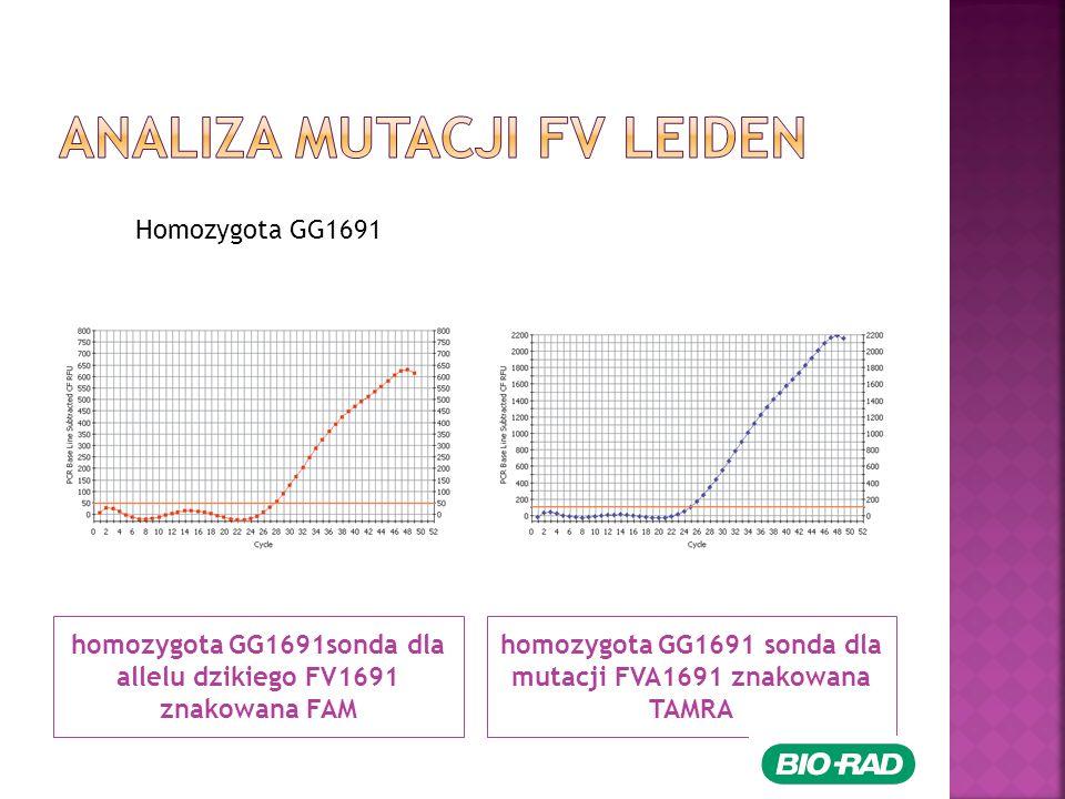 homozygota GG1691sonda dla allelu dzikiego FV1691 znakowana FAM homozygota GG1691 sonda dla mutacji FVA1691 znakowana TAMRA Homozygota GG1691