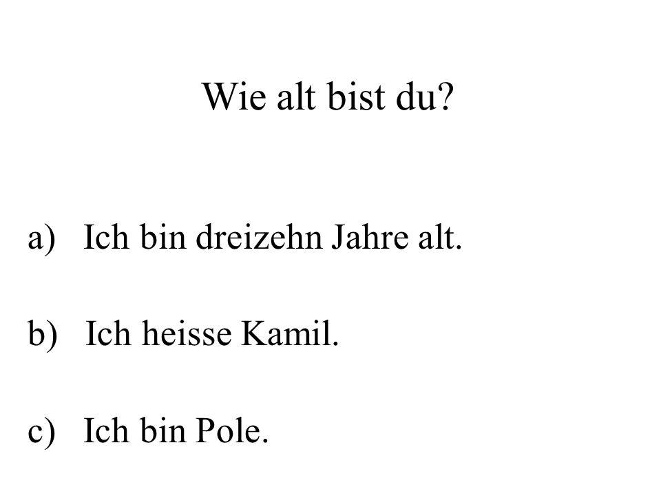 Wie alt bist du? a) Ich bin dreizehn Jahre alt. b) Ich heisse Kamil. c) Ich bin Pole.