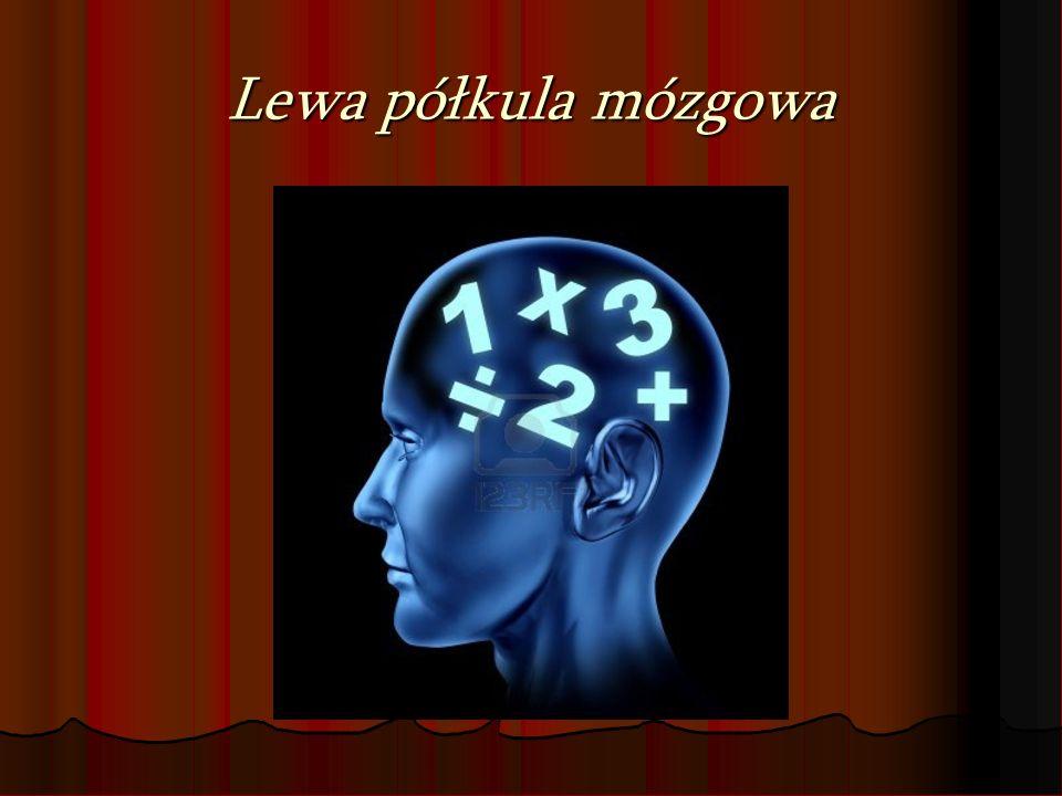 Specjalizacja prawej półkuli mózgowej Wizualizacja - informacje są kodowane i uzyskiwane w postaci wyobrażeń i obrazów, a nie słów.