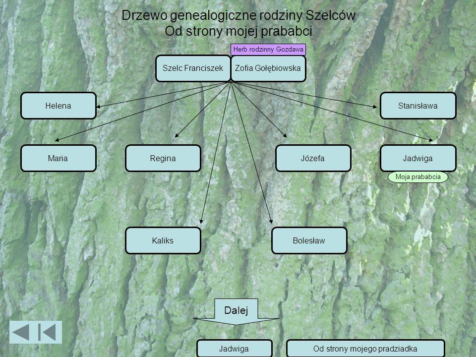 Drzewo genealogiczne rodziny Szelców Od strony mojej prababci Szelc FranciszekZofia Gołębiowska MariaReginaJózefaJadwiga Helena KaliksBolesław Stanisł