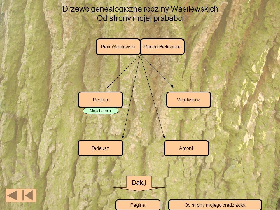 Drzewo genealogiczne rodziny Wasilewskich Od strony mojej prababci Piotr WasilewskiMagda Bielawska ReginaWładysław TadeuszAntoni Moja babcia Dalej ReginaOd strony mojego pradziadka