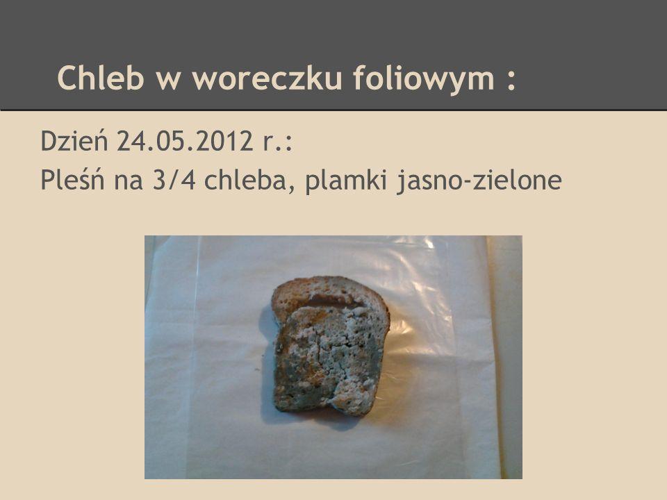 Chleb w woreczku foliowym : Dzień 24.05.2012 r.: Pleśń na 3/4 chleba, plamki jasno-zielone