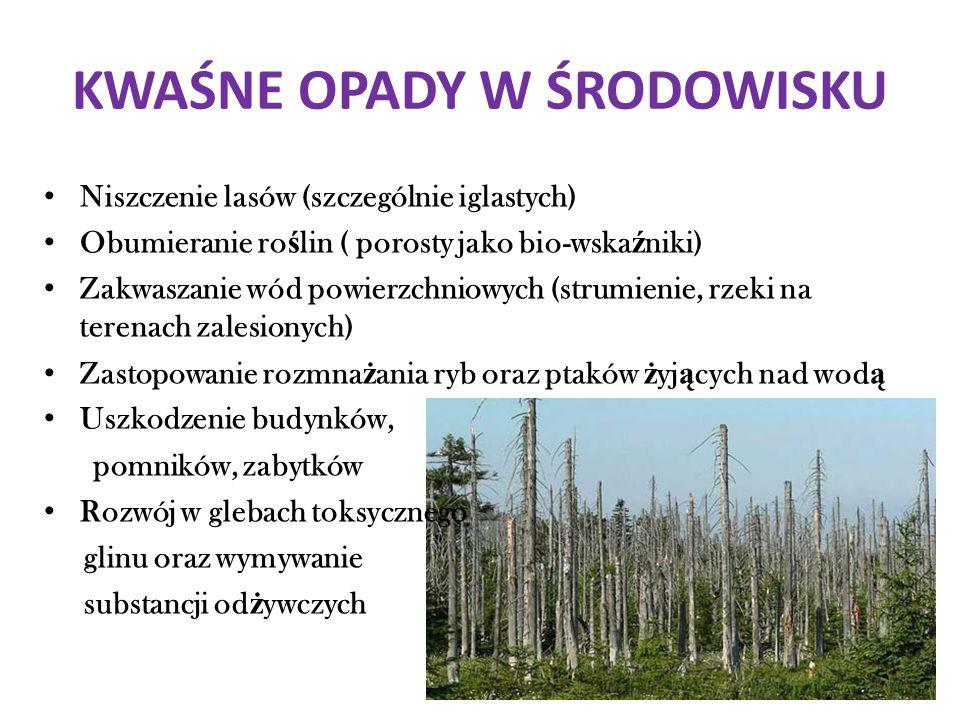 KWAŚNE OPADY W ŚRODOWISKU Niszczenie lasów (szczególnie iglastych) Obumieranie ro ś lin ( porosty jako bio-wska ź niki) Zakwaszanie wód powierzchniowy
