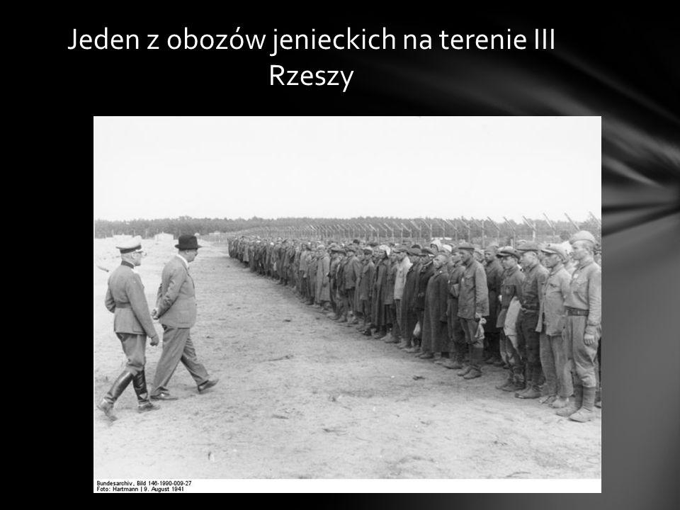 Ukrywając się u gospodarza węgierskiego został zadenuncjowany i przekazany władzom niemieckim, które umieściły zbiega w obozie jenieckim na ziemiach a
