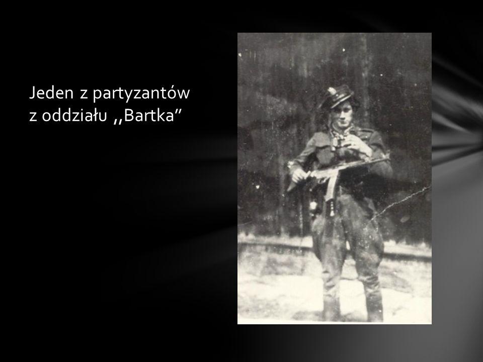 Założył organizację HAK podległą AK, która zajmowała się wywiadem i sabotażem. Na przełomie 1943-44 zagrożony dekonspiracją i aresztowaniem, wraz z po