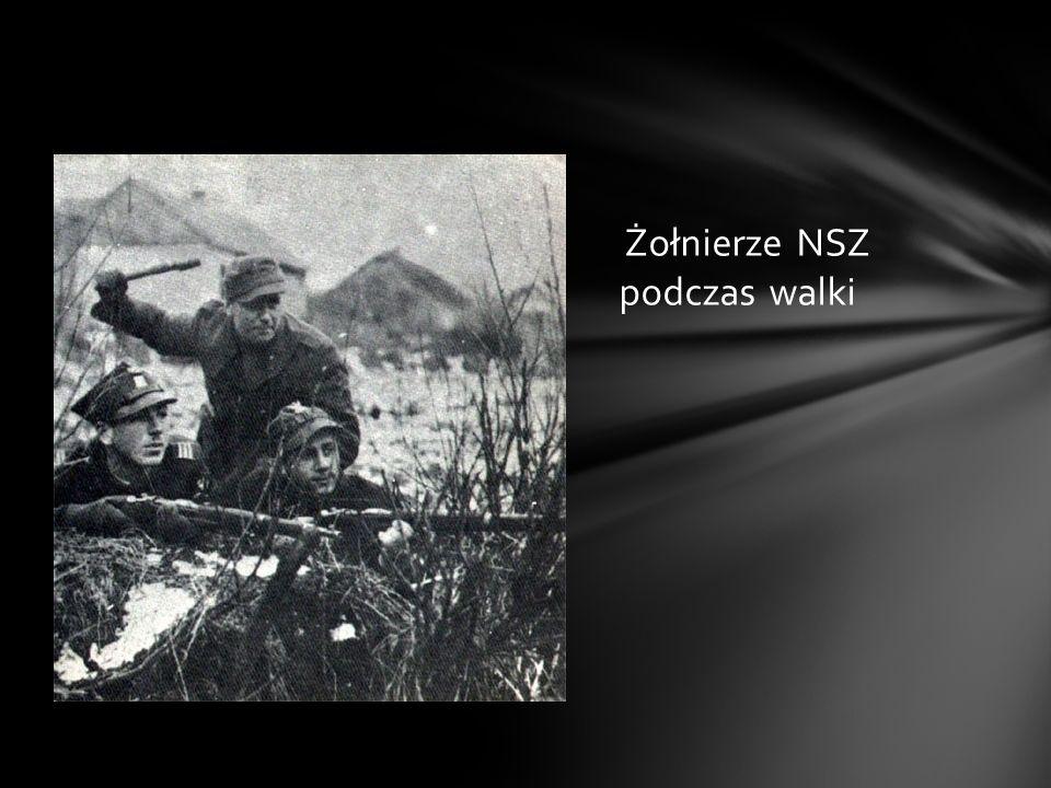 Dostrzeżony przez dowództwo NSZ otrzymał propozycję wejścia wraz z oddziałem w struktury tej organizacji, z czego skorzystał i w październiku 1944 zos