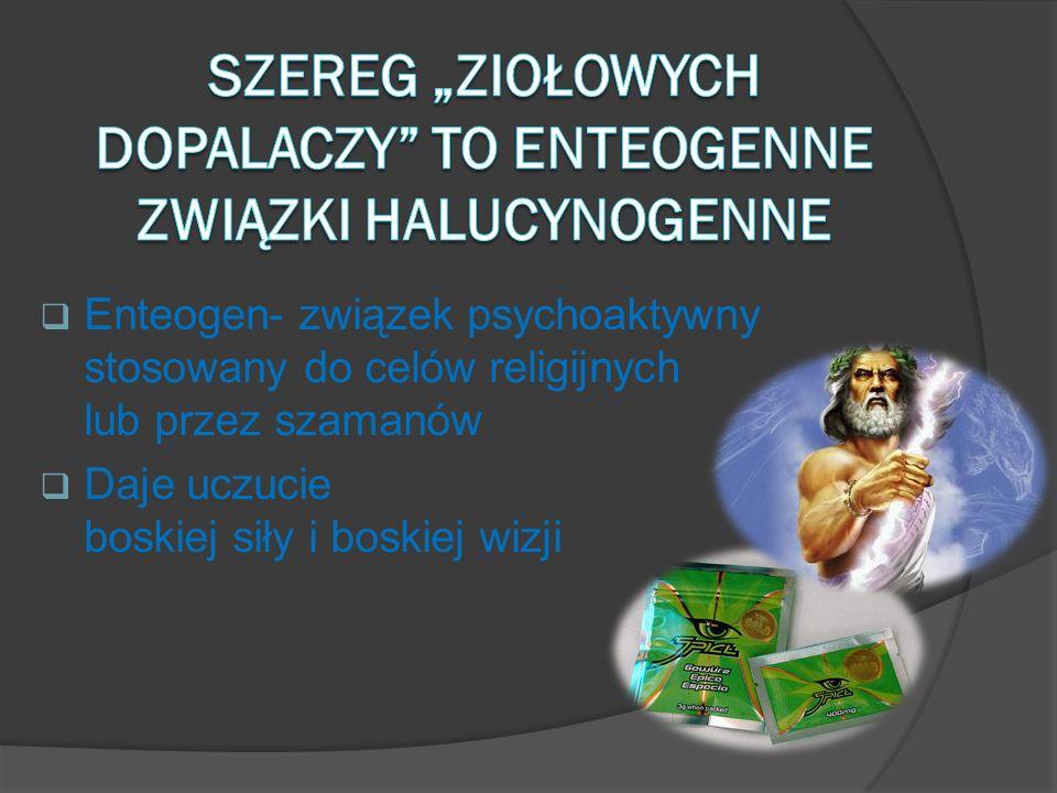 Enteogen- związek psychoaktywny stosowany do celów religijnych lub przez szamanów Daje uczucie boskiej siły i boskiej wizji