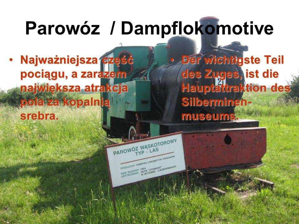 Parowóz / Dampflokomotive Najważniejsza część pociągu, a zarazem największa atrakcja pola za kopalnią srebra.Najważniejsza część pociągu, a zarazem największa atrakcja pola za kopalnią srebra.