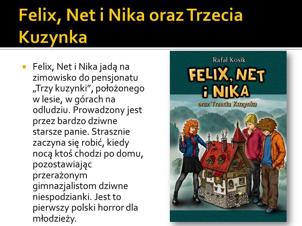 Felix, Net i Nika jadą na zimowisko do pensjonatu Trzy kuzynki, położonego w lesie, w górach na odludziu. Prowadzony jest przez bardzo dziwne starsze