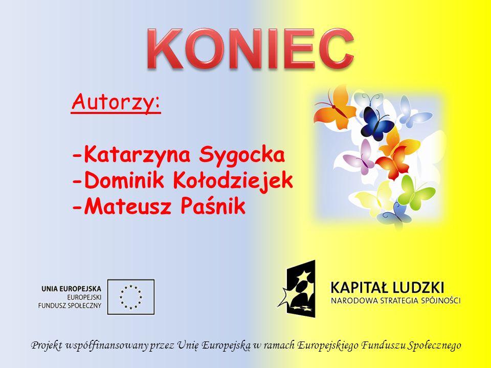 Projekt współfinansowany przez Unię Europejską w ramach Europejskiego Funduszu Społecznego Autorzy: -Katarzyna Sygocka -Dominik Kołodziejek -Mateusz Paśnik