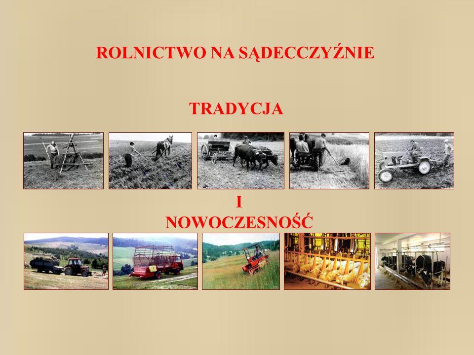 Tereny górzyste Polski zajmują łącznie powierzchnię około 25 tys.