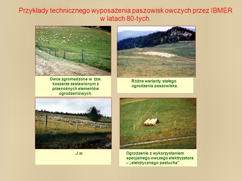 Przykłady technicznego wyposażenia paszowisk owczych przez IBMER w latach 80-tych. Owce zgromadzone w tzw. koszarze zestawionym z przenośnych elementó