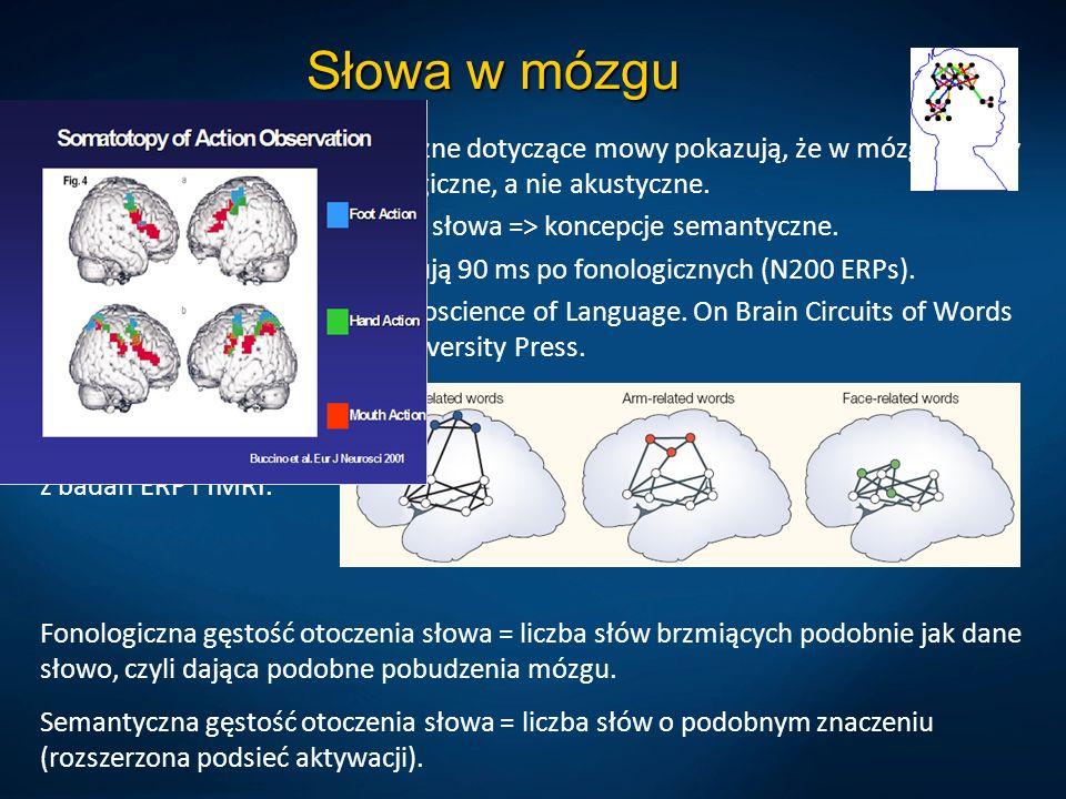 Słowa w mózgu Eksperymenty psycholingwistyczne dotyczące mowy pokazują, że w mózgu mamy dyskretne reprezentacje fonologiczne, a nie akustyczne. Sygnał