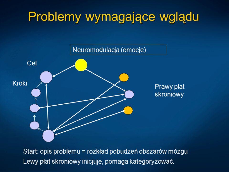 Problemy wymagające wglądu Prawy płat skroniowy Lewy płat skroniowy inicjuje, pomaga kategoryzować. Start: opis problemu = rozkład pobudzeń obszarów m