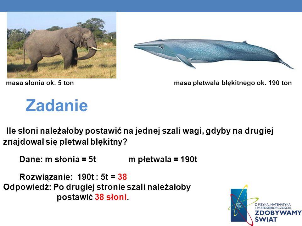masa słonia ok. 5 ton masa płetwala błękitnego ok. 190 ton Zadanie Ile słoni należałoby postawić na jednej szali wagi, gdyby na drugiej znajdował się