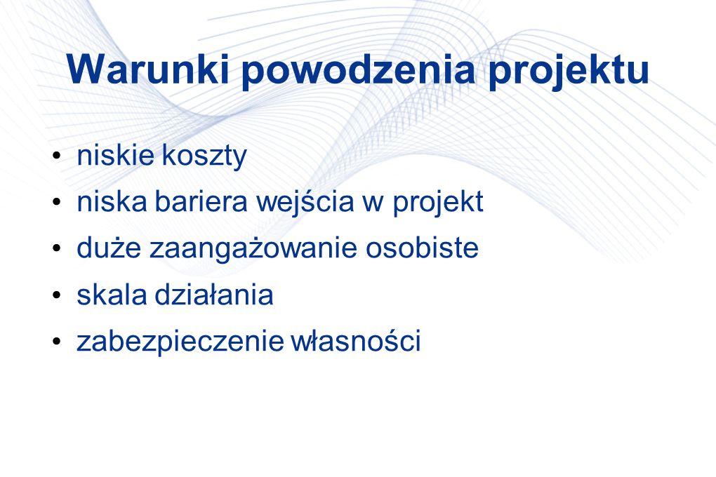Warunki powodzenia projektu niskie koszty niska bariera wejścia w projekt duże zaangażowanie osobiste skala działania zabezpieczenie własności