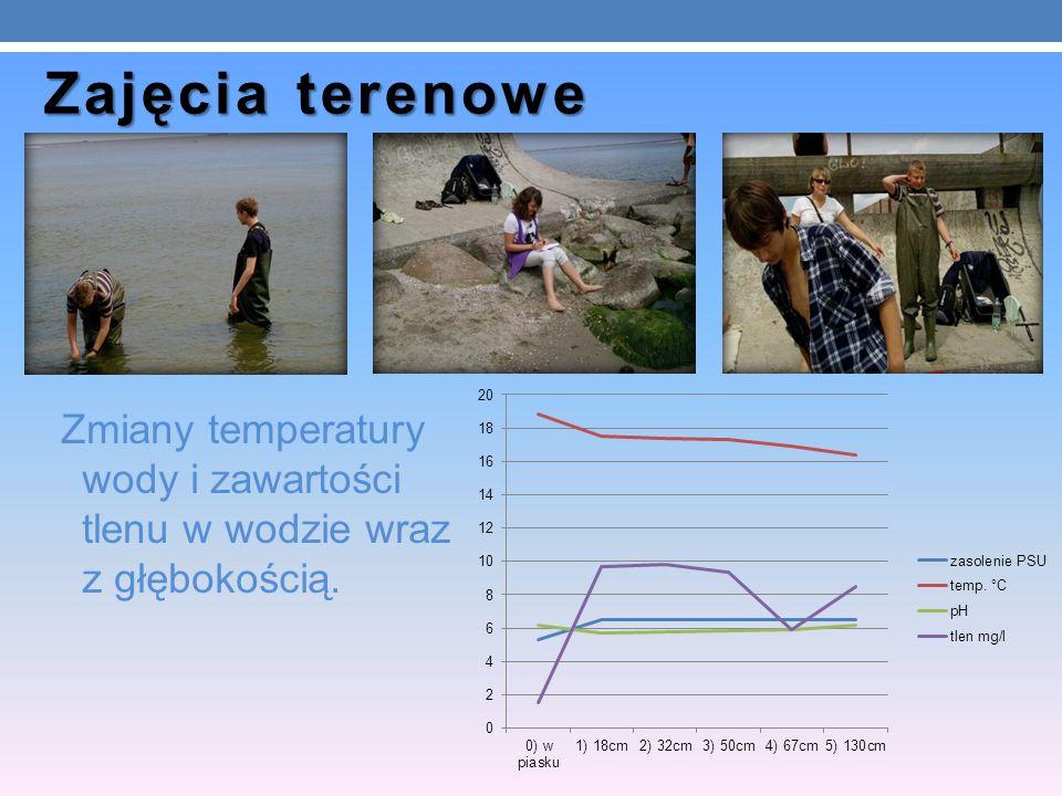 Zajęcia terenowe Zmiany temperatury wody i zawartości tlenu w wodzie wraz z głębokością.