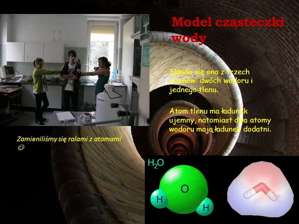 Model cząsteczki wody Składa się ona z trzech atomów: dwóch wodoru i jednego tlenu. Atom tlenu ma ładunek ujemny, natomiast dwa atomy wodoru mają ładu
