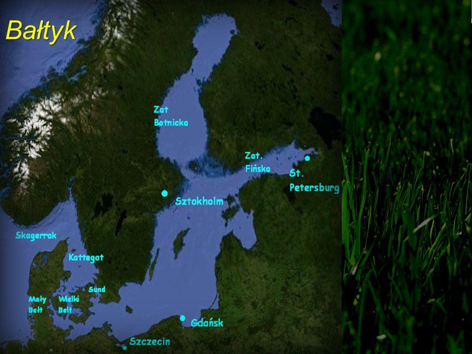 Bałtyckie Jezioro Lodowe 13 tyś lat temu Bałtyckie Jezioro Lodowe 10,3 tyś lat temu Morze Yoldiowe (10 tyś lat temu) Jezioro Ancylusowe ok.