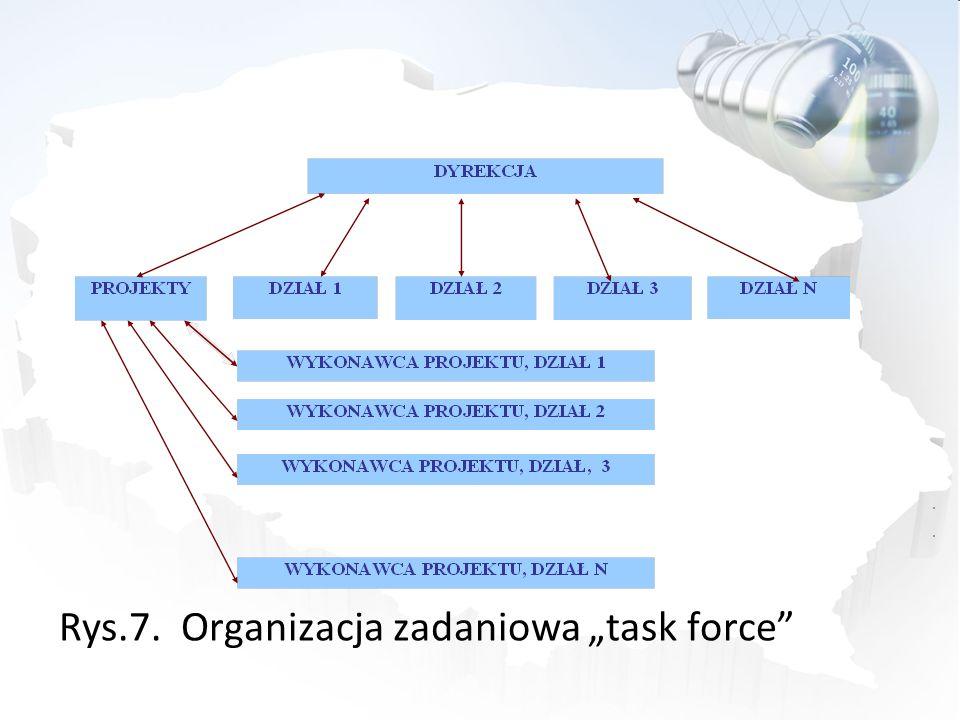 Rys.7. Organizacja zadaniowa task force