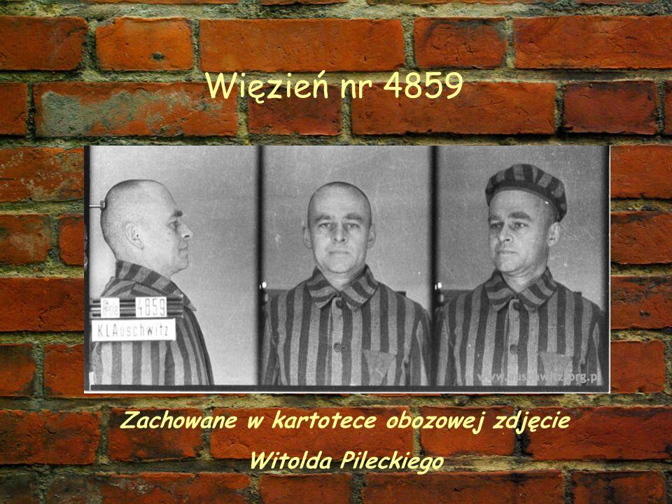 Więzień nr 4859 Zachowane w kartotece obozowej zdjęcie Witolda Pileckiego