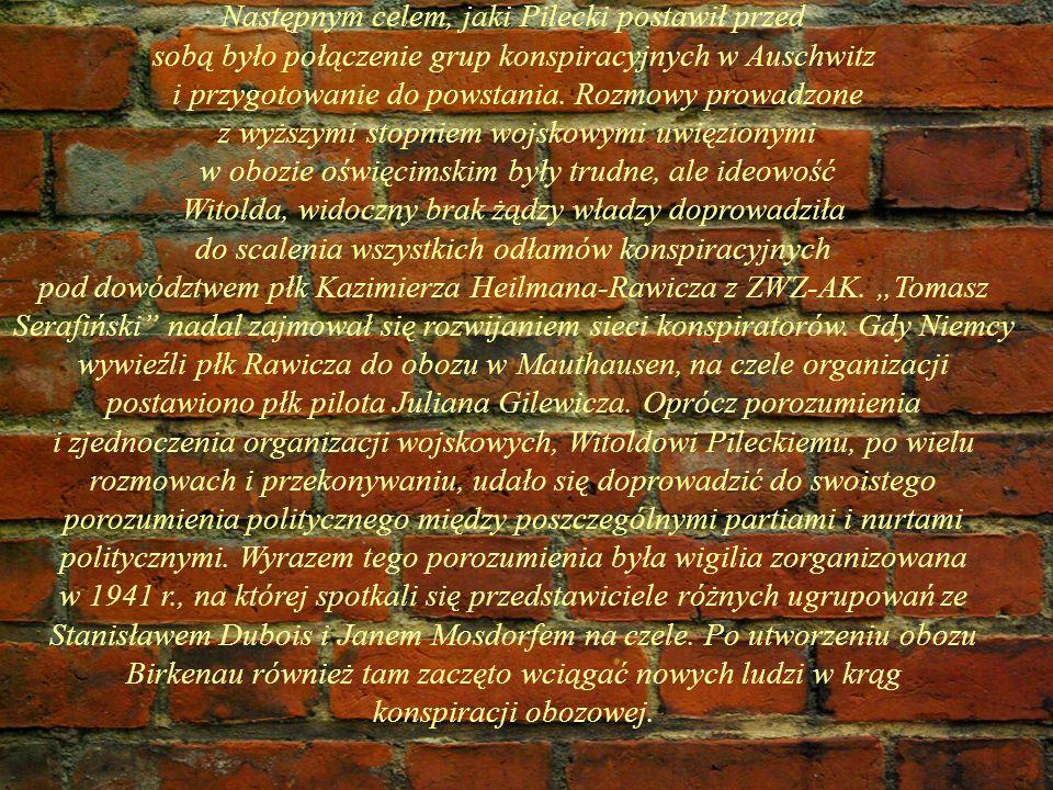 Następnym celem, jaki Pilecki postawił przed sobą było połączenie grup konspiracyjnych w Auschwitz i przygotowanie do powstania. Rozmowy prowadzone z