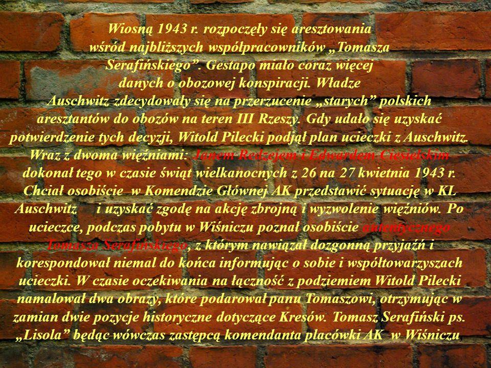 Wiosną 1943 r. rozpoczęły się aresztowania wśród najbliższych współpracowników Tomasza Serafińskiego. Gestapo miało coraz więcej danych o obozowej kon