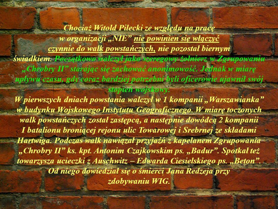 Chociaż Witold Pilecki ze względu na pracę w organizacji NIE nie powinien się włączyć czynnie do walk powstańczych, nie pozostał biernym świadkiem. Po