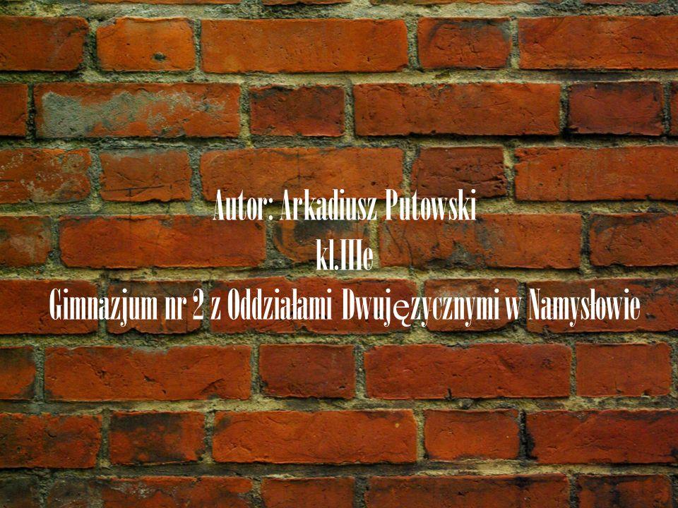 Autor: Arkadiusz Putowski kl.IIIe Gimnazjum nr 2 z Oddziałami Dwuj ę zycznymi w Namysłowie